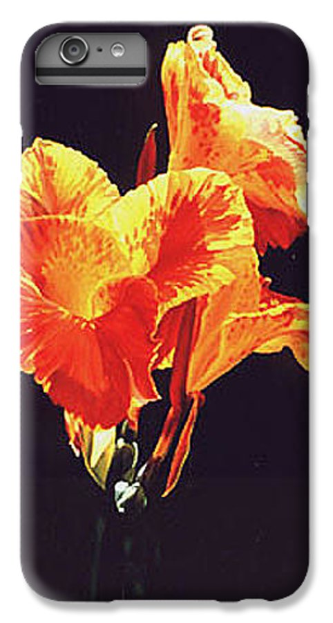 Floral IPhone 7 Plus Case featuring the painting Yellow Canna by Gary Hernandez