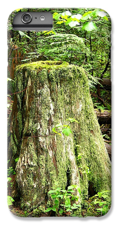 Moss IPhone 7 Plus Case featuring the photograph Transition by Idaho Scenic Images Linda Lantzy