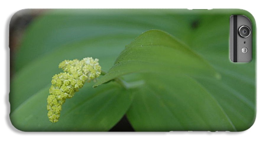 Flora IPhone 7 Plus Case featuring the photograph Untitled by Kathy Schumann
