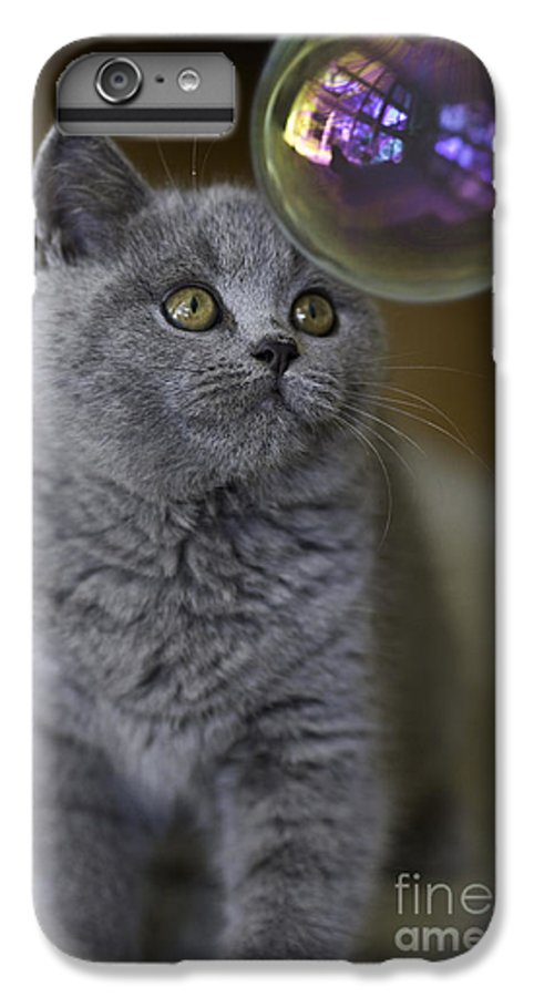 Cat IPhone 7 Plus Case featuring the photograph Archie With Bubble by Sheila Smart Fine Art Photography