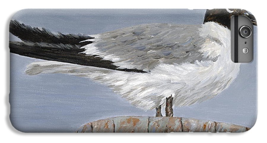 Seagull IPhone 7 Plus Case featuring the painting Bimini Gull by Danielle Perry