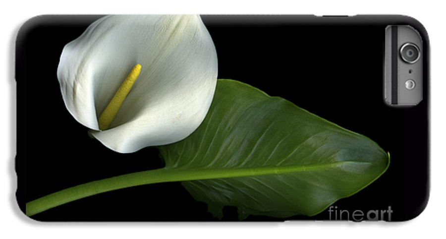 Scanography IPhone 7 Plus Case featuring the photograph Calla Lily by Christian Slanec