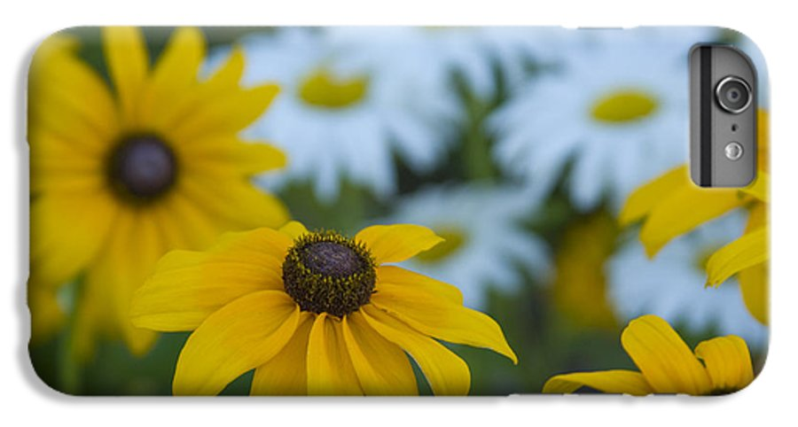 Daisy IPhone 7 Plus Case featuring the photograph Daisies by Idaho Scenic Images Linda Lantzy