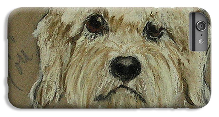 Dandie Dinmont Terrier IPhone 7 Plus Case featuring the drawing Dandie by Cori Solomon