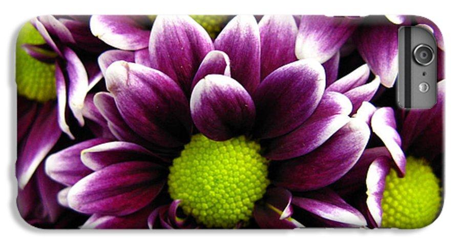 Purple IPhone 7 Plus Case featuring the photograph Delicate Purple by Rhonda Barrett