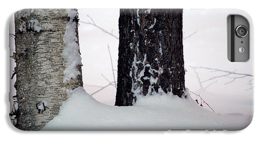 Tree IPhone 7 Plus Case featuring the photograph Ebony And Ivory by Faith Harron Boudreau