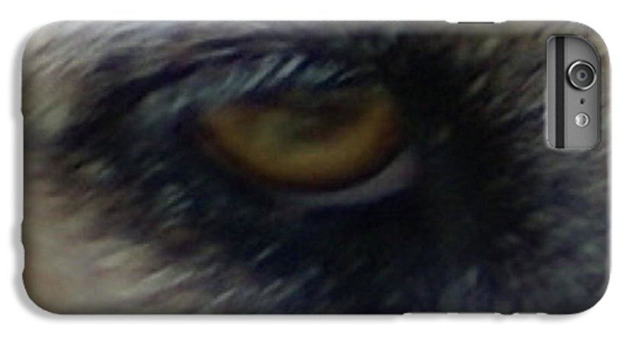 Eyes IPhone 7 Plus Case featuring the photograph Eye Of The Beholder by Debbie May