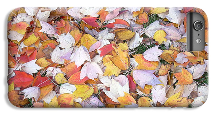 Photography Fall Autum Leaves IPhone 7 Plus Case featuring the photograph Fallen Fantasy by Karin Dawn Kelshall- Best