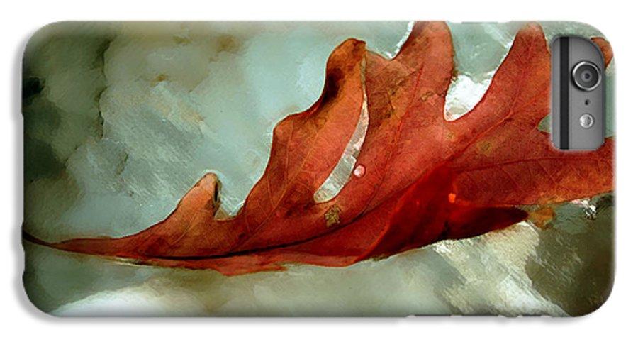 Nature IPhone 7 Plus Case featuring the photograph Fallen Leaf by Linda Sannuti