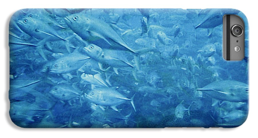 Fish IPhone 7 Plus Case featuring the photograph Fish Schooling Harmonious Patterns Throughout The Sea by Christine Till