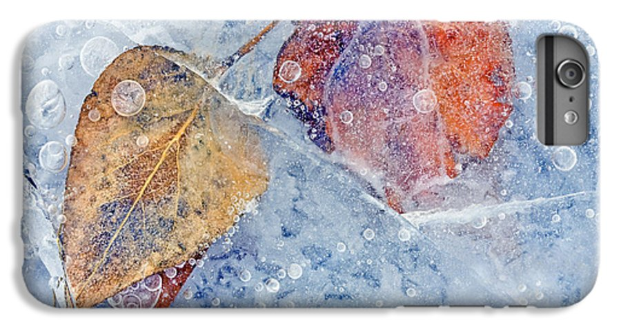 Ice IPhone 7 Plus Case featuring the photograph Fractured Seasons by Mike Dawson