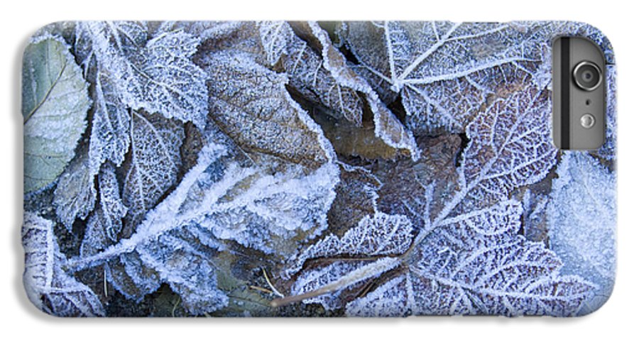 Frost IPhone 7 Plus Case featuring the photograph Frost by Idaho Scenic Images Linda Lantzy