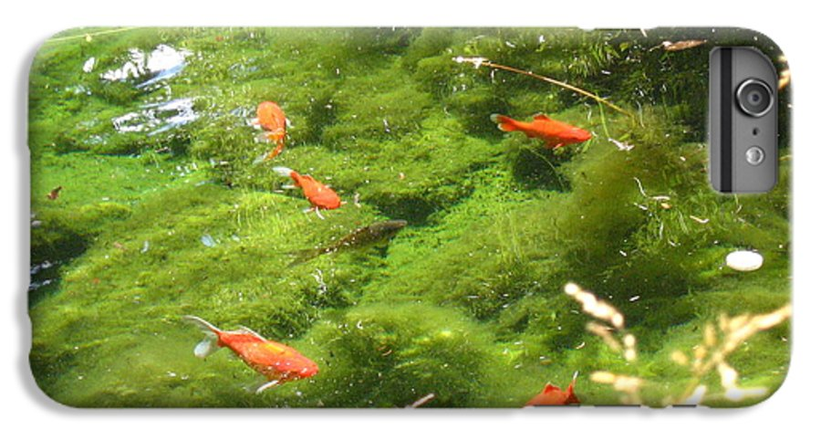 Goldfish IPhone 7 Plus Case featuring the photograph Goldfish In A Pond by Melissa Parks