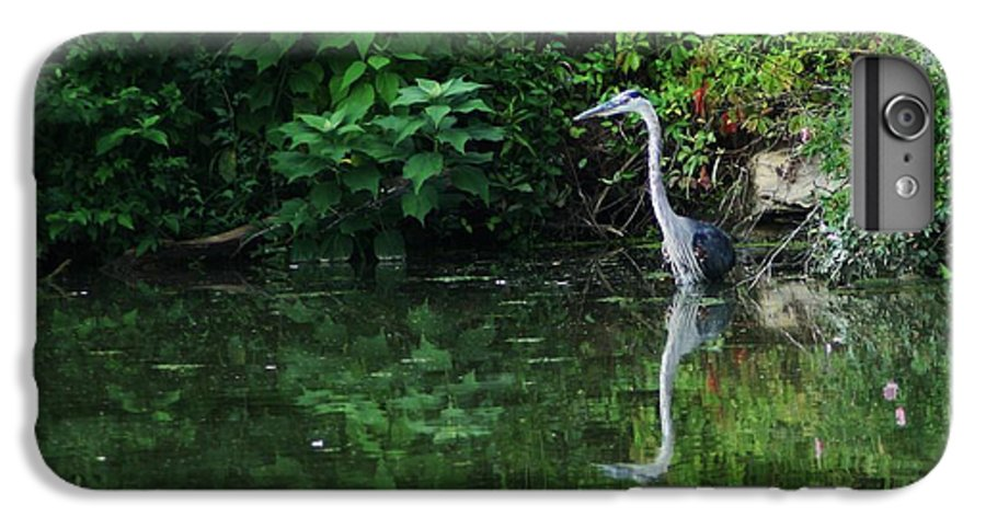 Lanscape Water Bird Crane Heron Blue Green Flowers Great Photograph IPhone 7 Plus Case featuring the photograph Great Blue Heron Hunting Fish by Dawn Downour