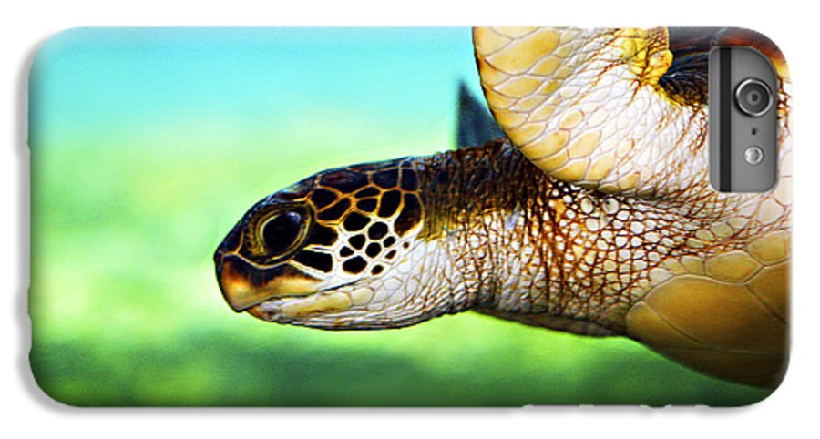 Green IPhone 7 Plus Case featuring the photograph Green Sea Turtle by Marilyn Hunt