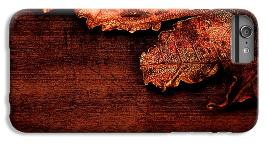 Red IPhone 7 Plus Case featuring the photograph Let Me Hold You... by Dana DiPasquale