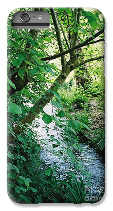 Photography IPhone 7 Plus Case featuring the photograph Monet's Garden Stream by Nadine Rippelmeyer