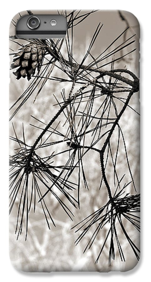 Tree IPhone 7 Plus Case featuring the photograph Needles Everywhere by Marilyn Hunt