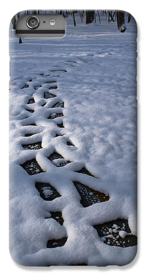 Path IPhone 7 Plus Case featuring the photograph Path by Douglas Barnett