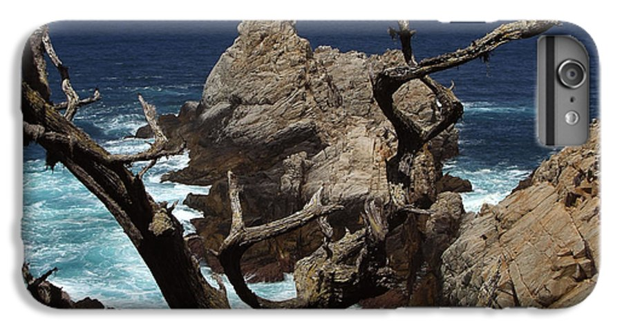 Carmel IPhone 7 Plus Case featuring the photograph Point Lobos Rocks And Branches by Charlene Mitchell