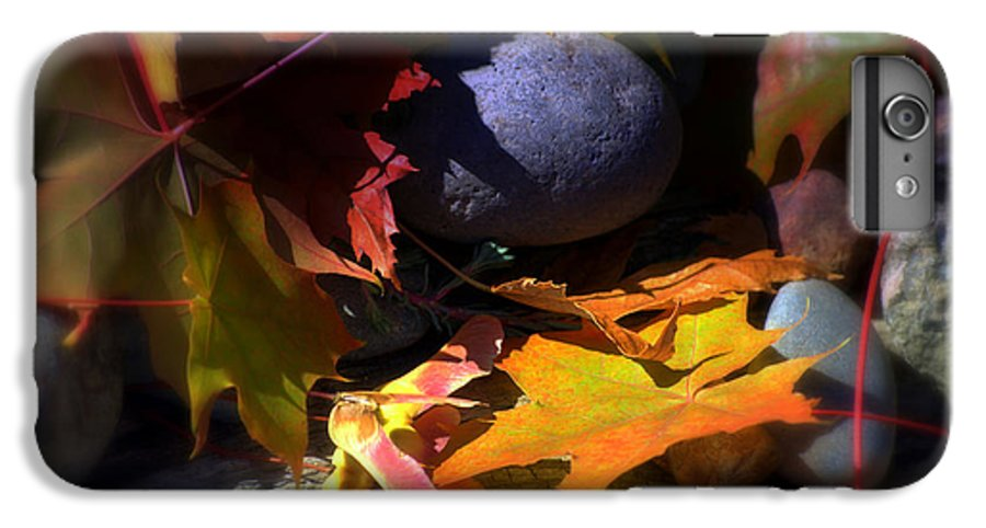 Leaves IPhone 7 Plus Case featuring the photograph Seed by Larry Keahey