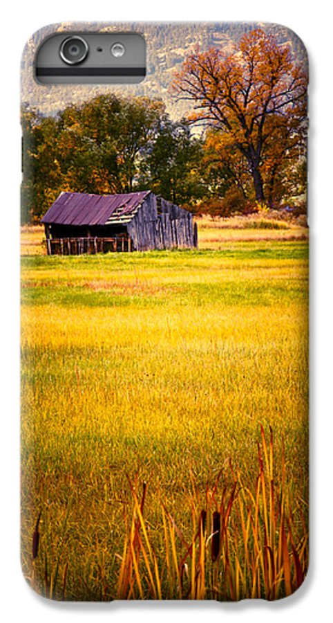 Shed IPhone 7 Plus Case featuring the photograph Shed In Sunlight by Marilyn Hunt