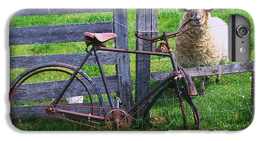 Photograph Sheep Bicycle Fence Grass IPhone 7 Plus Case featuring the photograph Sheep And Bicycle by Seon-Jeong Kim