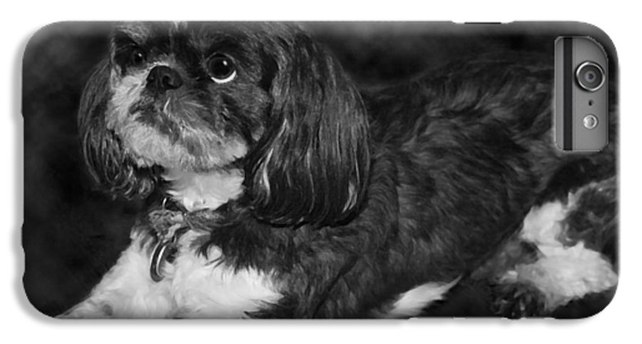 3scape IPhone 7 Plus Case featuring the painting Shih Tzu by Adam Romanowicz