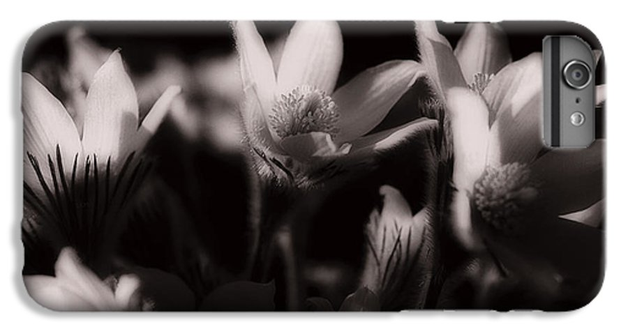 Flowers IPhone 7 Plus Case featuring the photograph Sleepy Flowers by Marilyn Hunt