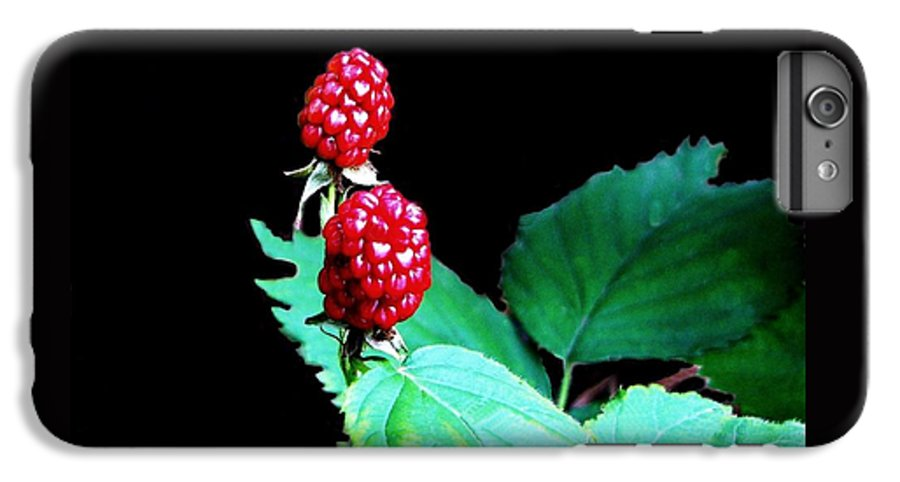 Black Berries IPhone 7 Plus Case featuring the digital art Unripe Blackberries by Kenna Westerman