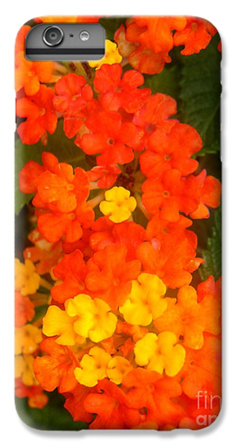 Nature IPhone 7 Plus Case featuring the photograph Volcanic Display by Lucyna A M Green