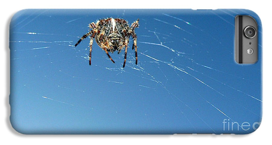 Spider IPhone 7 Plus Case featuring the photograph Waiting by Larry Keahey