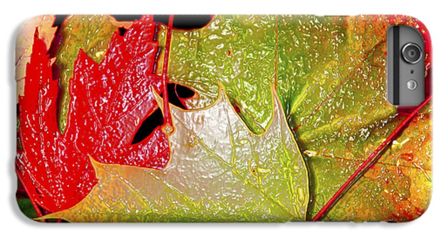 Leaves IPhone 7 Plus Case featuring the photograph Wet Leaves Of Fall by Larry Keahey