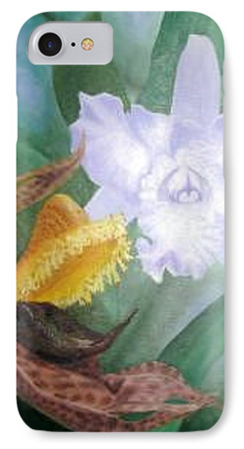 Orchids IPhone Case featuring the Beauty And The Beast by Rachel Cruse