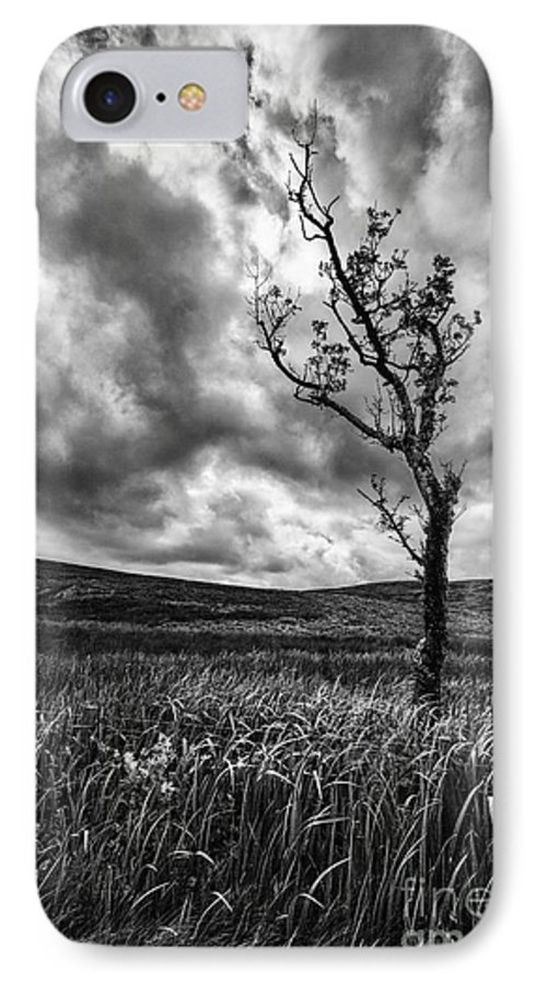 Ayrshire IPhone 8 Case featuring the photograph Lone Tree On The Ayrshire Moors by John Farnan