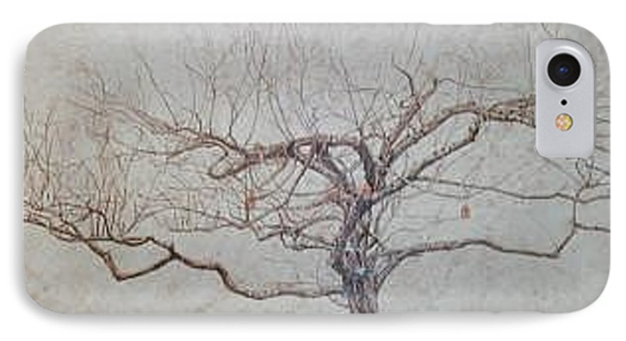 Apple Tree IPhone Case featuring the painting Apple Tree In Winter by Leah Tomaino