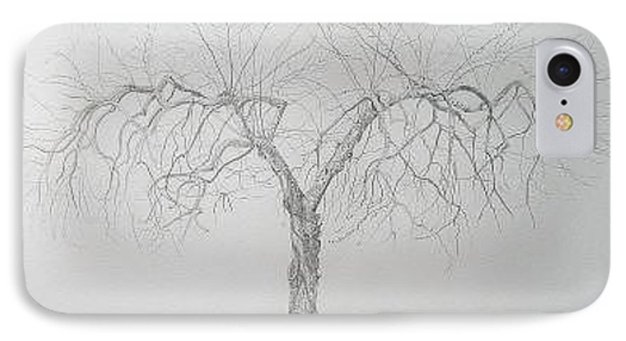 Cortland Apple Tree IPhone Case featuring the drawing Cortland Apple by Leah Tomaino