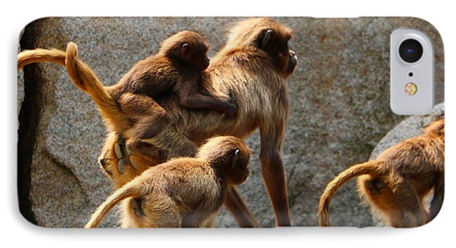 Animal IPhone 8 Case featuring the photograph Monkey Family by Dennis Maier