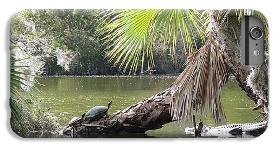 Swamp IPhone 8 Plus Case featuring the photograph Swamp Life by Red Cross