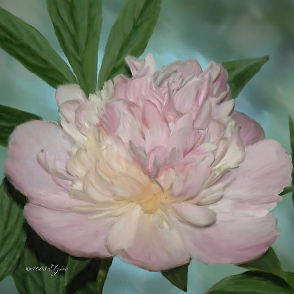 Pink Peony Poster featuring the painting Pink Peony by Elzire S