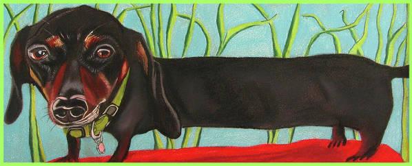 Dog Painting Poster featuring the pastel Dash Hound by Michelle Hayden-Marsan