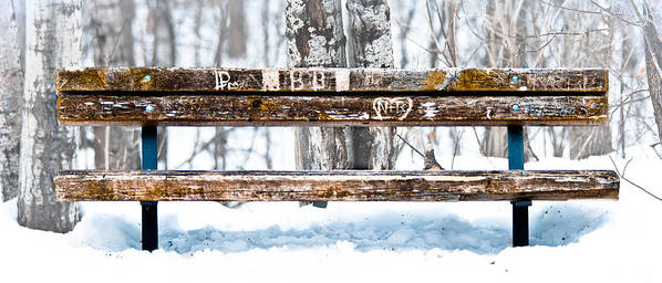 Winter Poster featuring the photograph Come Sit Awhile by Chris ODonoghue