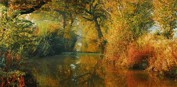 Pano Panoramic Landscape Woodland Scenes Orange The Fall River Stream Colours Autumn Beautiful Gorgeous Dreamy Poster featuring the photograph Where The Adventure Begins by John Chivers