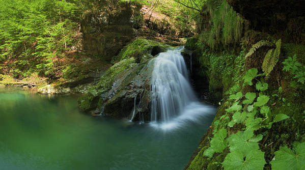 Landscapes Poster featuring the photograph Emerald Waterfall by Davorin Mance