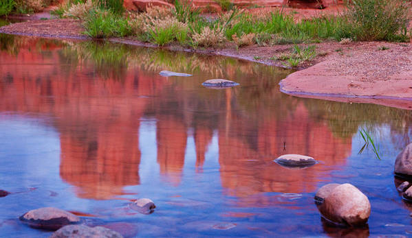 Red Rocks Poster featuring the photograph Cathedral Rock Reflection Pastel by Bob Coates
