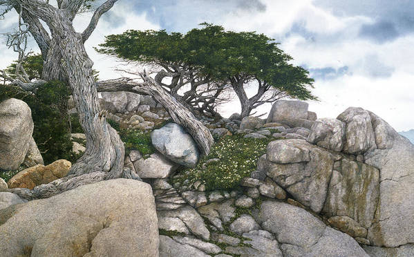 Seascape Poster featuring the painting Among The Cypress by Tom Wooldridge