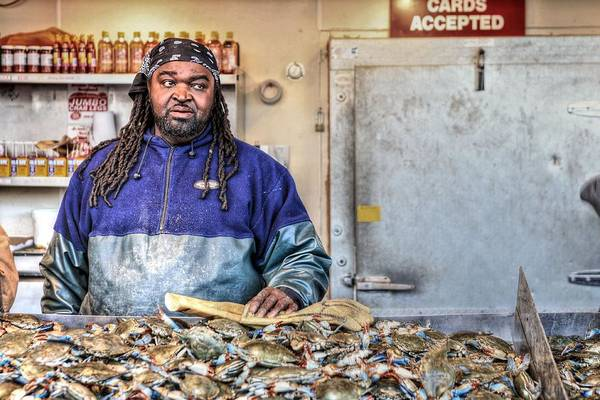 Washington Dc Fish Market Poster featuring the photograph Crabby by JC Findley