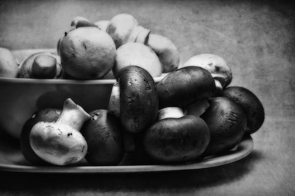 Art Poster featuring the photograph Mushroom Still Life by Tom Mc Nemar
