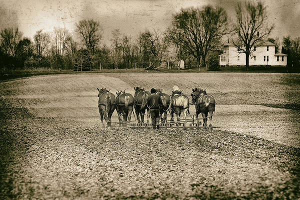 Agriculture Poster featuring the photograph Tilling The Fields by Tom Mc Nemar