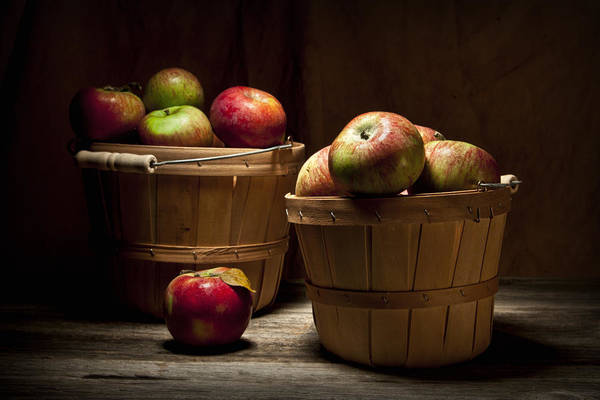 Apple Poster featuring the photograph Fresh From The Orchard IIi by Tom Mc Nemar